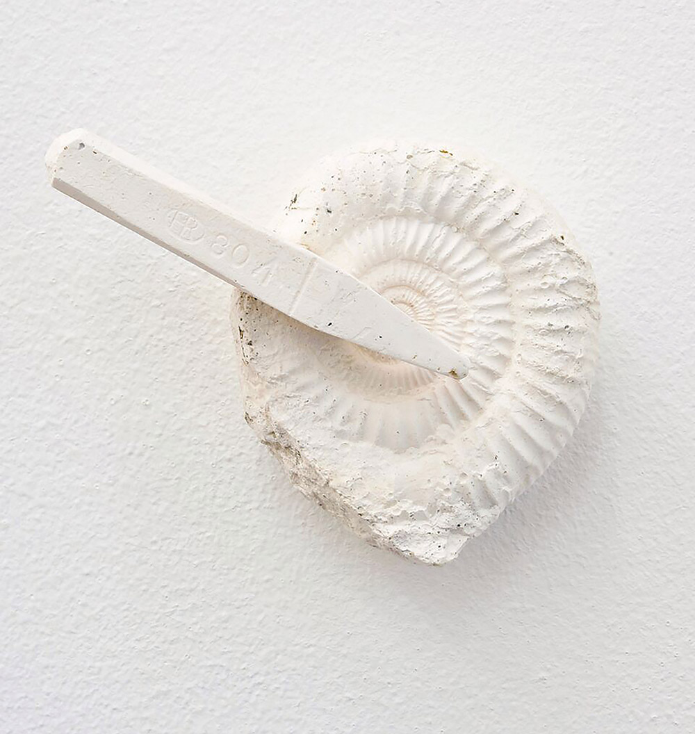"""2008 awardee Niall Macdonald's """"Die Ammonite"""" exhibited at 10th anniversary exhibition in Royal Botanic Garden Edinburgh."""